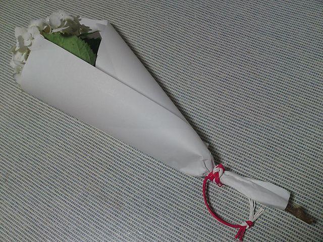 Sn3j0612